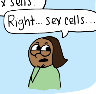 Sex in the cell