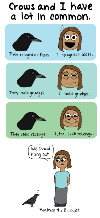 crows and i have a lot in common. they recognize faces. i recognize faces. they hold grudges. i hold grudges. they seek revenge. i seek revenge. we should hang out.